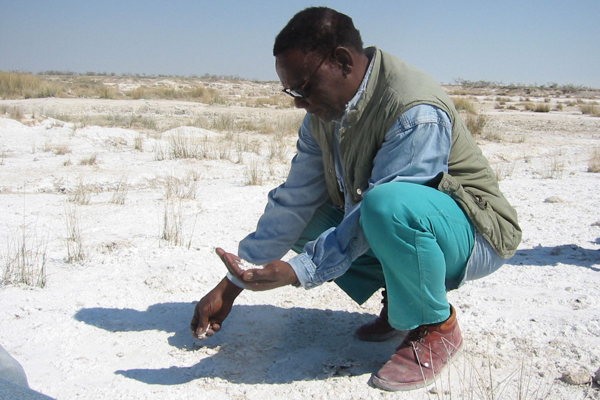 Kadisen Khumub collecting salt at ‡Gunub